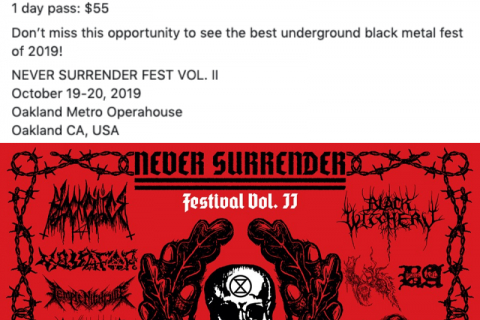 480_screenshot_2019-10-14_never_surrender_festival_-_posts-down.jpg