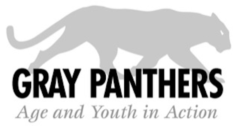 panther__22age___youth_in_action_22.jpeg