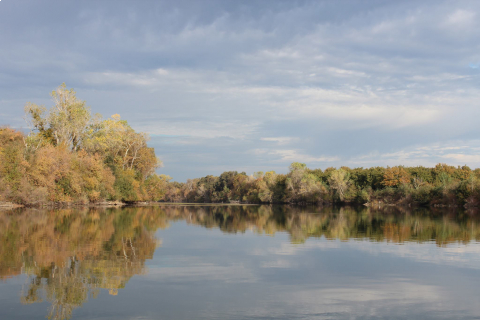 480_feather_river_near_gridley_1.jpg