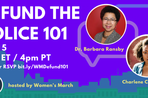 480_defund_the_police_webinar_june_5_2020__2_.jpg