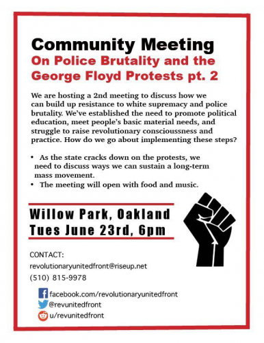 Community Meeting on Police Brutality and the George Floyd Protests Pt. 2 @ Willow Park