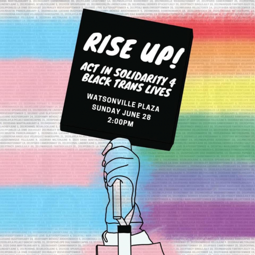 sm_rise_up_act_in_solidarity_4_black_trans_lives_watsonville_pajaro_valley_pride.jpg