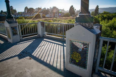 480_defund_santa_cruz_police_scpd_march__15_san_lorenzo_river_viewing_platform_water_street_bridge.jpg