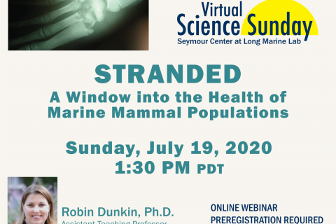 480_stranded_a_window_into_the_health_of_marine_mammal_populations_seymour_marine_discovery_center_uc_santa_cruz_1.jpg