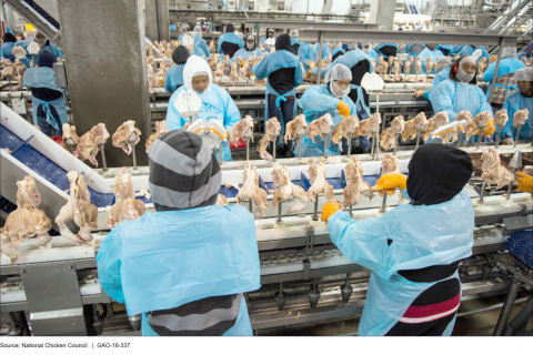 480_foster_farms_assembly_line.jpg