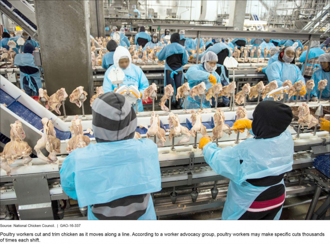 sm_foster_farms_assembly_line.jpg