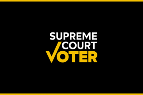 480_supreme_court_voter.jpg