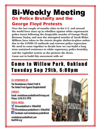 Community Meeting On Police Brutality and the George Floyd Protests @ Willow Park