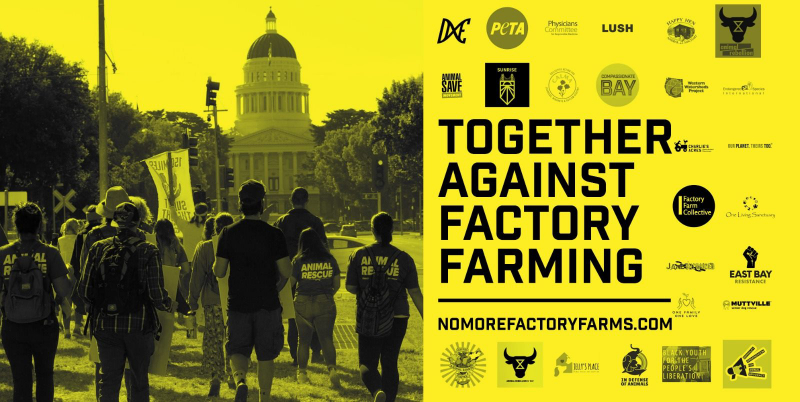 sm_together_against_factory_farms.jpg
