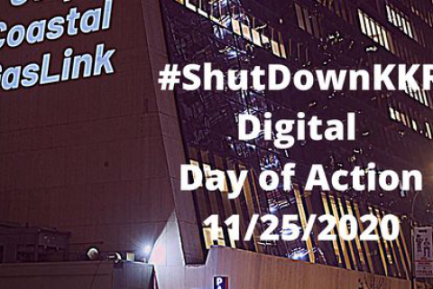 480_shutdownkkr-dayofaction-11252020_1.jpg