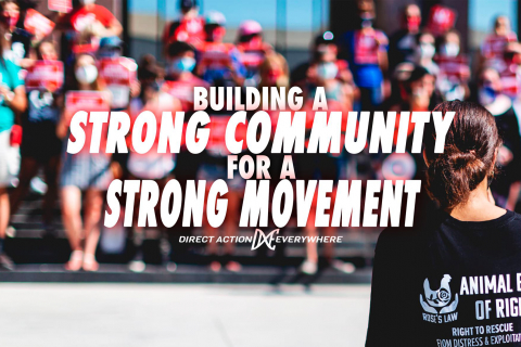 480_meetup-_building_a_strong_community_for_a_strong_movement__1.jpg