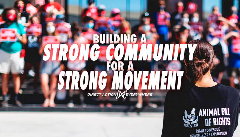 sm_meetup-_building_a_strong_community_for_a_strong_movement_.jpg