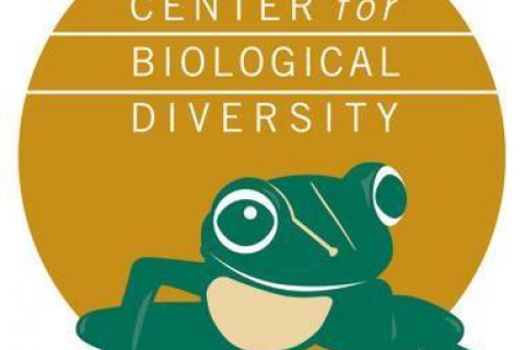 480_center_for_biological_diversity.jpg