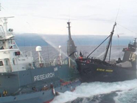 Sea Shepherd Returns From the Whale Wars