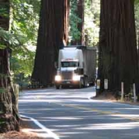 Protest Planned as Caltrans Prepares to Widen US-101 Through Richardson Grove