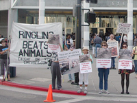 Ringling Bros. Circus Opening Night Demonstration for Animals in San Jose