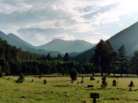 Save the San Francisco Peaks