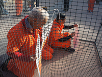 Human Rights Abuses Continue in Guantánamo