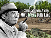 MWD, Westlands consider purchasing Delta islands in tunnels' path