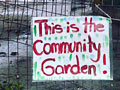 Gardeners Evicted from Beach Flats Community Garden