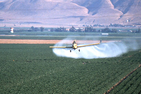 Agricultural Pesticide Use Up 10% in Monterey, 9.4% in Santa Cruz
