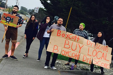 International Days of Action to Boycott Driscoll's
