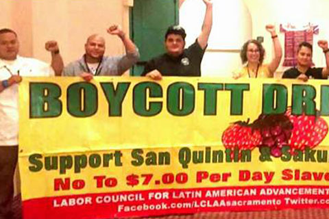LCLAA Resolution In Solidarity with the Farmworkers In San Quintín and Skagit County