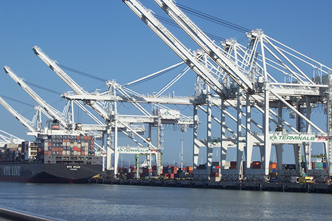 ILWU Dockworkers Squeezed by Automation, Abandoned by Politicians