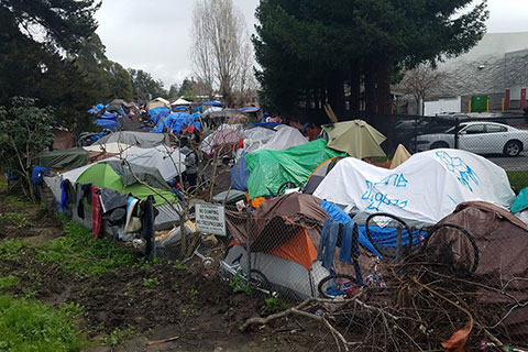 City of Santa Cruz to Move Forward on Transitional Homeless Encampments